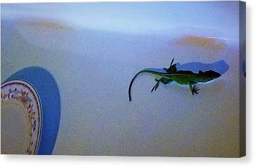 Canvas Print featuring the photograph Oscar The Lizard by Denise Fulmer