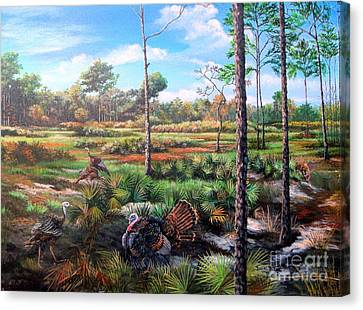 Osceola Turkeys And Florida Panther - Life  After The Burn Canvas Print by Daniel Butler