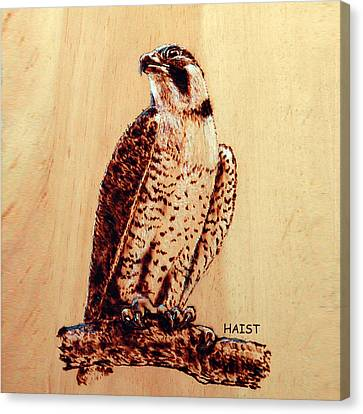 Osprey 2 Pillow/bag Canvas Print by Ron Haist
