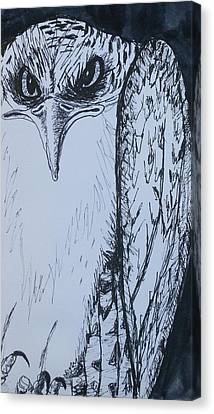 Osprey Canvas Print - Osprey by Anna-Maria Sacio