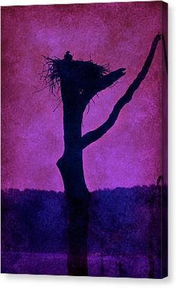 Osprey Nest Silhouette - Manasquan Reservoir Canvas Print by Angie Tirado