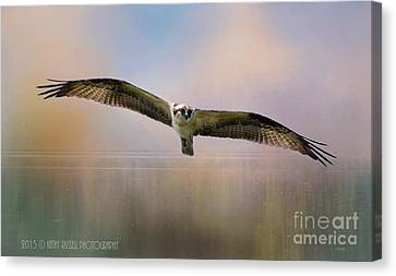 Osprey Over The Shenandoah Canvas Print