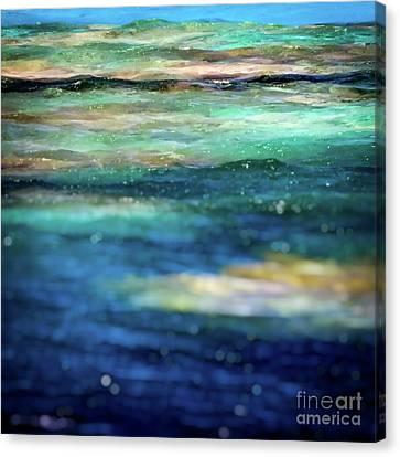 Osprey Reef Canvas Print by Doug Sturgess