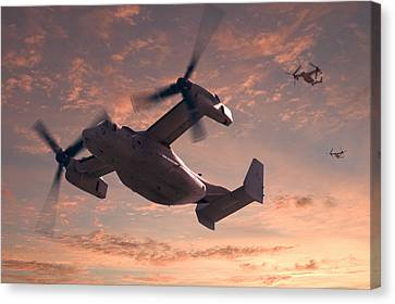 Ospreys In Flight Canvas Print by Mike McGlothlen