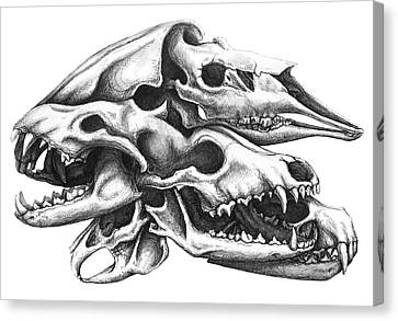 Osseous Alloy Canvas Print