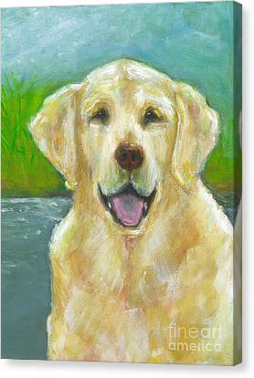 Ossie Canvas Print by Frances Marino