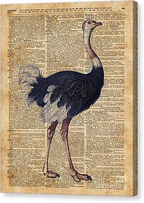 Ostrich Big Bird Animal Vintage Dictionary Illustration Canvas Print by Jacob Kuch
