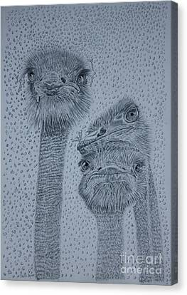 Ostrich Umbrella Canvas Print
