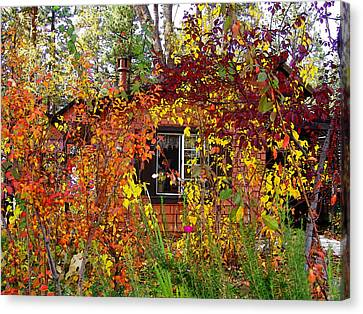 Other Side Of The Leaves Canvas Print by Glenn McCarthy Art and Photography