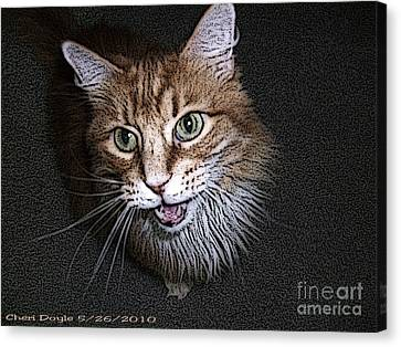 Otis The Orange Kitty Canvas Print