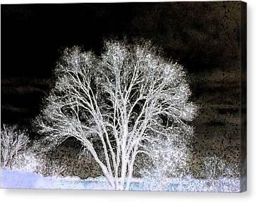 Canvas Print featuring the digital art Ottawa Tree Silhouette by Ellen Barron O'Reilly