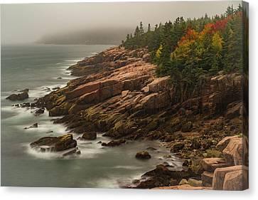 Otter Cliffs Canvas Print