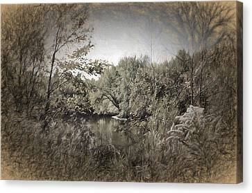 Otter Creek  Canvas Print
