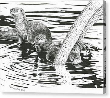 Otters Three Canvas Print