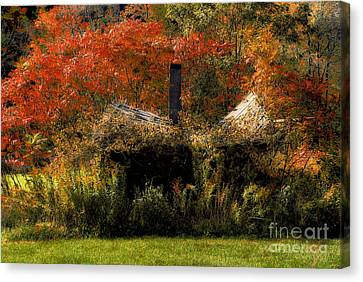 Ouch Canvas Print by Lois Bryan