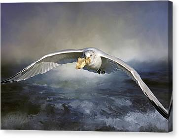 Sea Birds Canvas Print - Our Daily Bread by Donna Kennedy