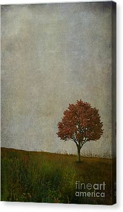 Artography Canvas Print - Our Meeting Place by AJ Yoder