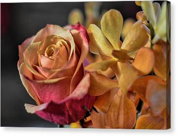 Canvas Print featuring the photograph Our Passion by Diana Mary Sharpton