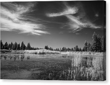 Our Preservation Canvas Print by Jon Glaser
