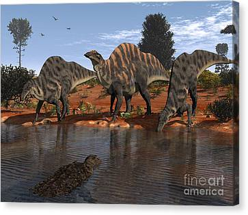 Ouranosaurus Drink At A Watering Hole Canvas Print by Walter Myers