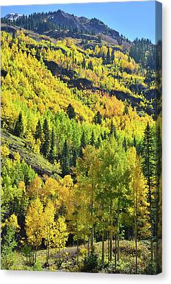 Canvas Print featuring the photograph Ouray Canyon Switchbacks by Ray Mathis