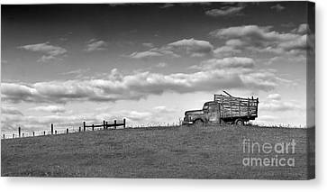 Out For Delivery In Floyd Virginia Canvas Print by T Lowry Wilson