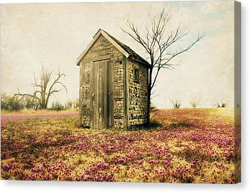 Outhouse Canvas Print by Julie Hamilton