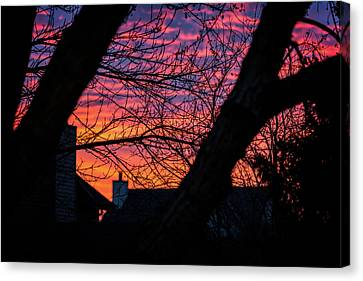 Out My Back Window Canvas Print by CJ Schmit