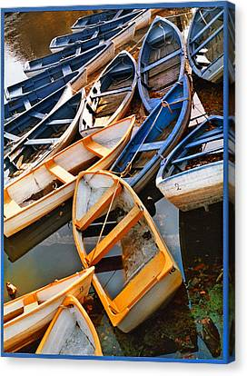 Out Of Season Canvas Print by Robert Lacy