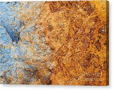 Out Of The Fire Canvas Print by Tim Gainey