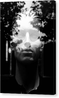 Out Of The Mist Canvas Print by Jez C Self