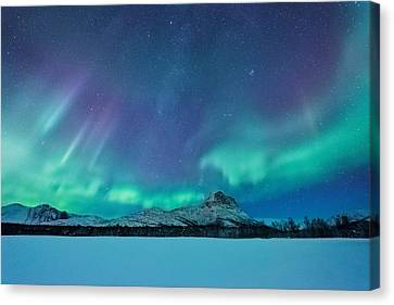 Out Of The Woods Canvas Print by Tor-Ivar Naess