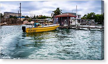 Out On Bail Canvas Print by Lawrence Burry