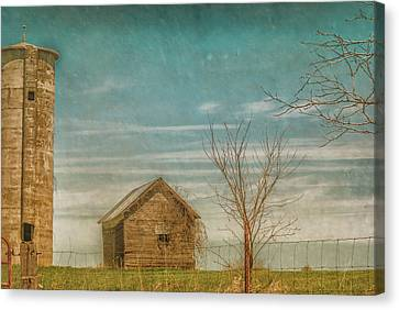 Out On The Farm Canvas Print by Pamela Williams