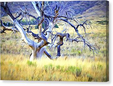Canvas Print featuring the digital art Out Standing In My Field by James Steele