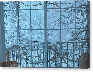Out The Window Canvas Print by Peter Williams