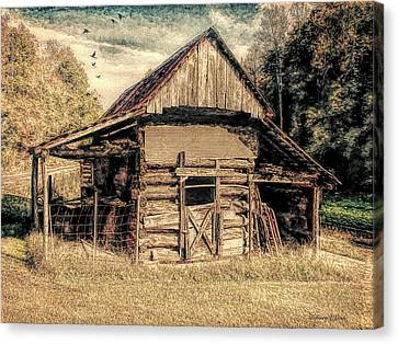 Canvas Print featuring the photograph Out To Pasture 1 by Bellesouth Studio