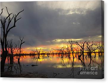 Outback Sunset Canvas Print by Blair Stuart