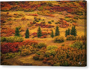 Canvas Print - Outcasts  by Peter Coskun