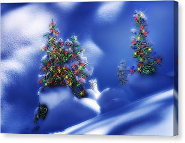 Outdoor Christmas Trees Canvas Print by Utah Images
