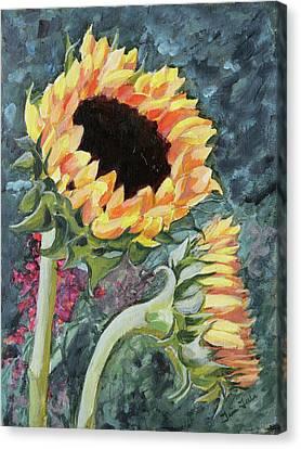 Outdoor Sunflowers Canvas Print by Trina Teele