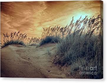 Outer Banks Memories 5 Canvas Print by Dan Carmichael