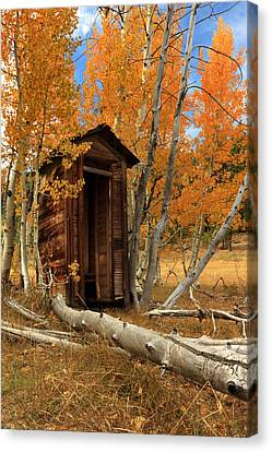 Outhouse In The Aspens Canvas Print