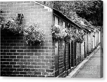 Outhouses All In A Row - Black And White Canvas Print