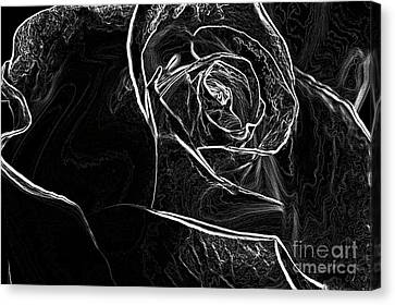 Canvas Print featuring the photograph Outline Of A Rose by Micah May