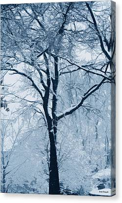 Outside My Window Canvas Print by Linda Sannuti