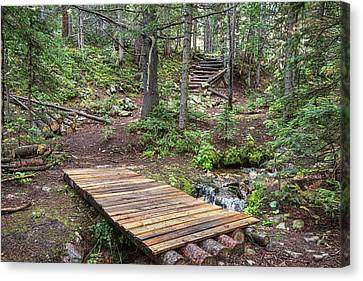 Canvas Print featuring the photograph Over The Bridge And Through The Woods by James BO Insogna