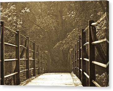 Over The Bridge Canvas Print by Brian Roscorla