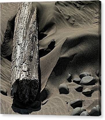 Over The Dune Canvas Print by Bonnie Bruno
