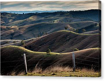Wine Scene Canvas Print - Over The Back Fence by Az Jackson